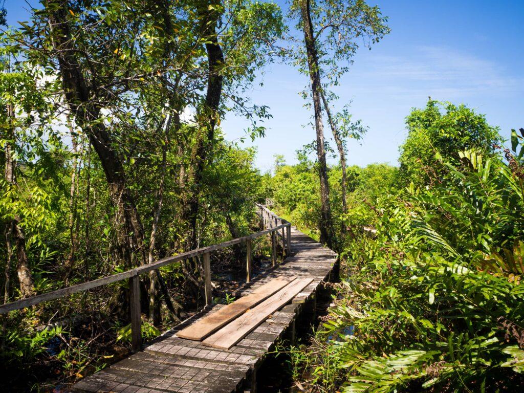 Cayo Zapatilla walking trail